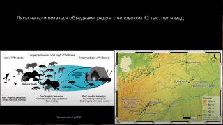 Новости археологии с Владиславом Житенёвым (4 лекция)